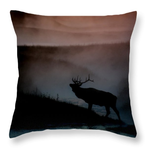 Shadows along the Madison Throw Pillow by Gary Langley