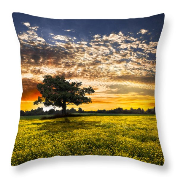 Shadows At Sunset Throw Pillow by Debra and Dave Vanderlaan