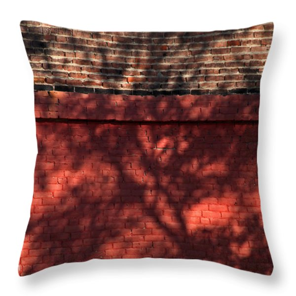 Shadows On The Wall Throw Pillow by Karol  Livote