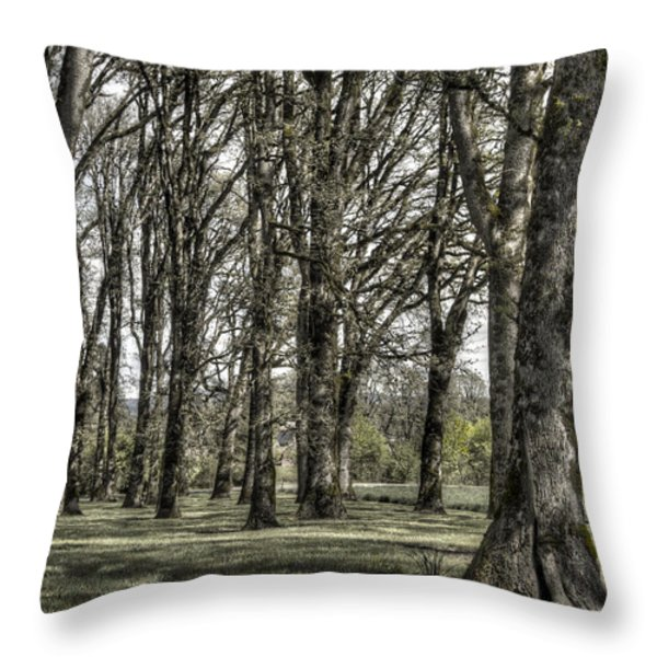 Shady Grove Throw Pillow by Jean Noren