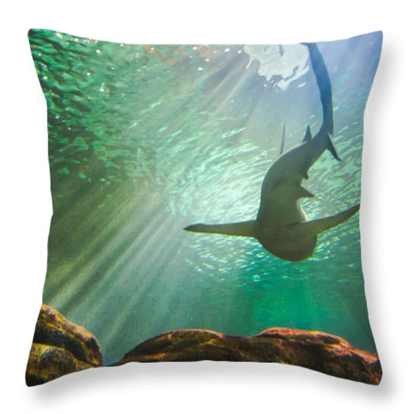 Shark Tank Throw Pillow by Bill Pevlor