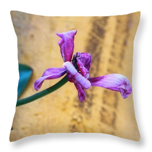 She Did Her Job Throw Pillow by Joan Bertucci