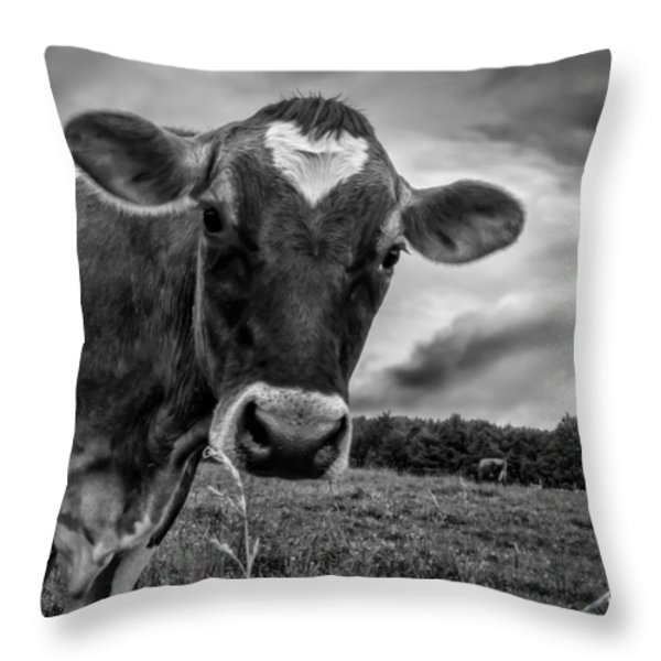 She wears her heart for all to see Throw Pillow by Bob Orsillo