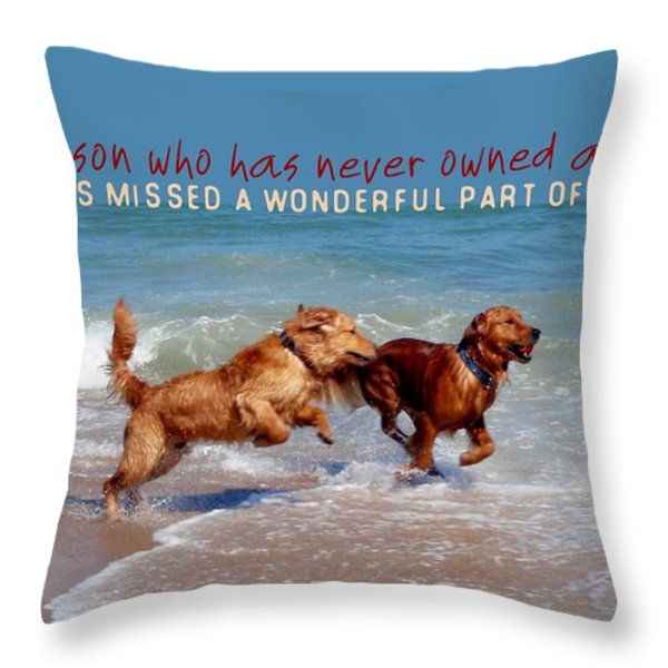 SHEER JOY quote Throw Pillow by JAMART Photography