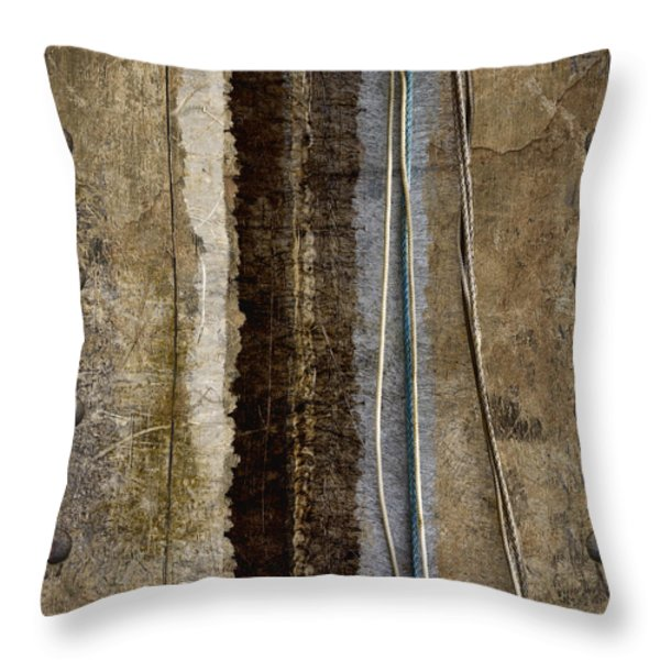 Sheetmetal Strings Throw Pillow by Carol Leigh