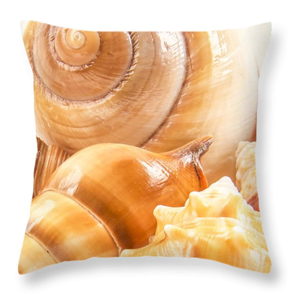 Shells Throw Pillow by Jean Noren