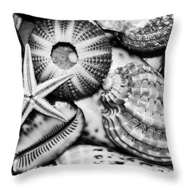 Shellscape in Monochrome Throw Pillow by Kaye Menner