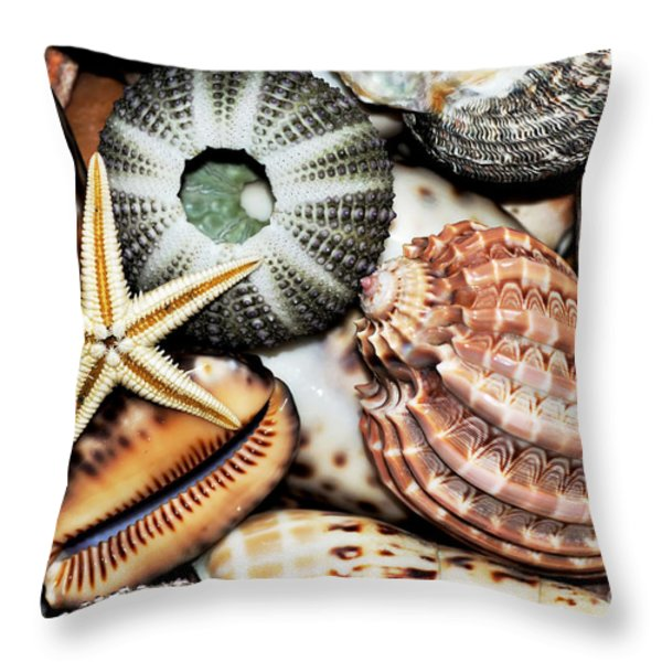 Shellscape Throw Pillow by Kaye Menner