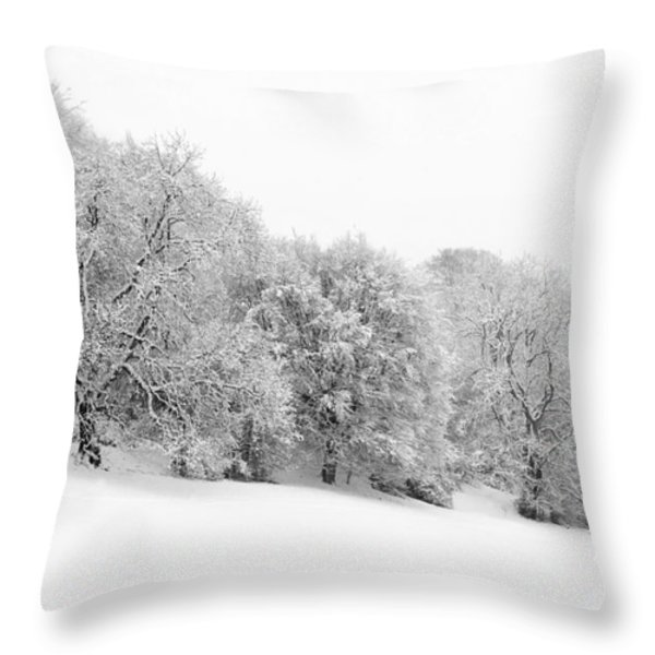 Sherman's Wood Throw Pillow by Anne Gilbert