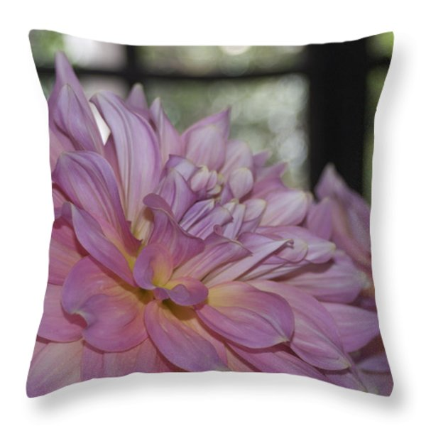 Shine Bright Like A Diamond Throw Pillow by Trish Tritz