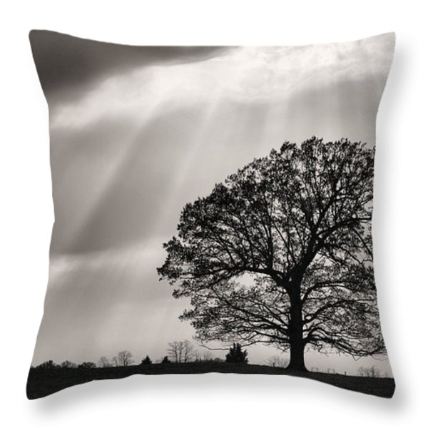 Shining Down Throw Pillow by JC Findley