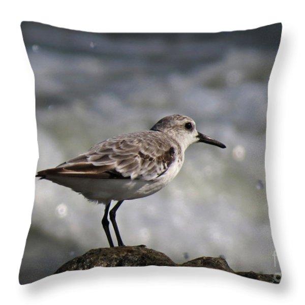 Shore Sanderling Throw Pillow by Deborah Smith