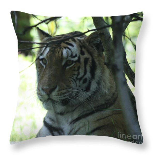 Siberian Tiger Profile Throw Pillow by John Telfer