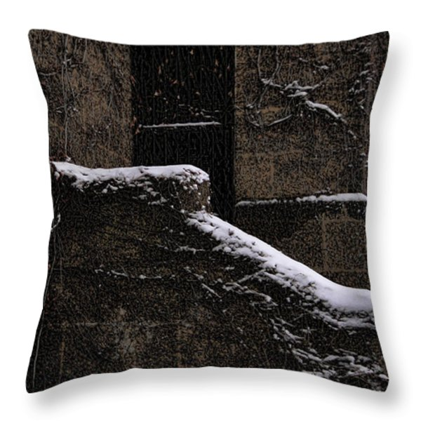 Side door Throw Pillow by Jasna Buncic