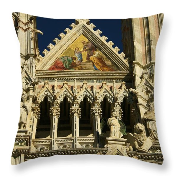 Sienna 2 Throw Pillow by Barbara Stellwagen