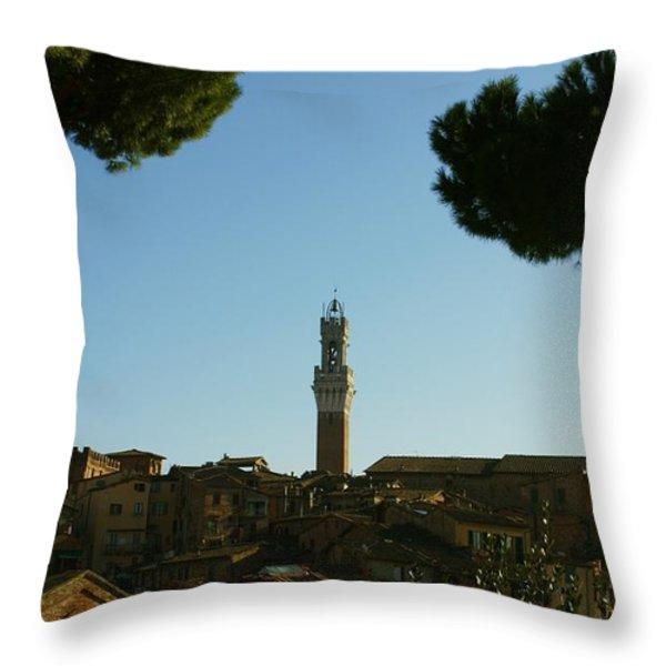 Sienna Serenity Throw Pillow by Barbara Stellwagen