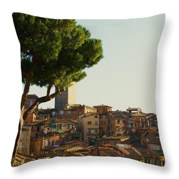 Sienna Skyline Throw Pillow by Barbara Stellwagen