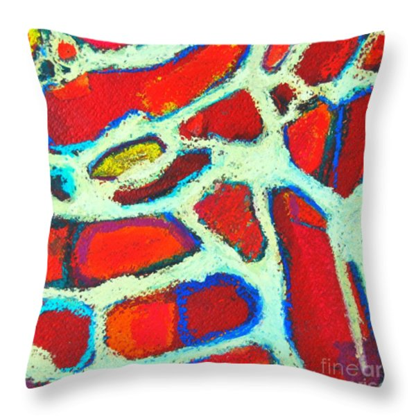 Signs 37 Throw Pillow by Ana Maria Edulescu