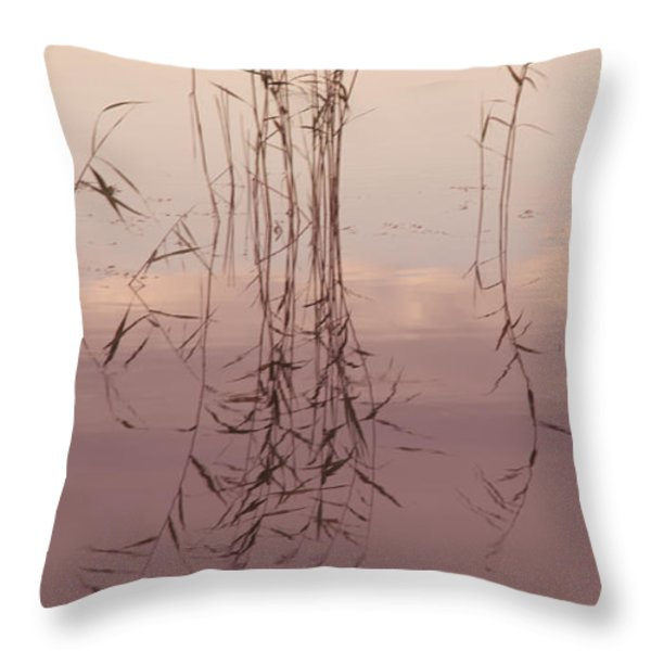 Silent Rhapsody. Sacred Music II Throw Pillow by Jenny Rainbow