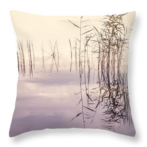 Silent Rhapsody. Sacred Music Throw Pillow by Jenny Rainbow