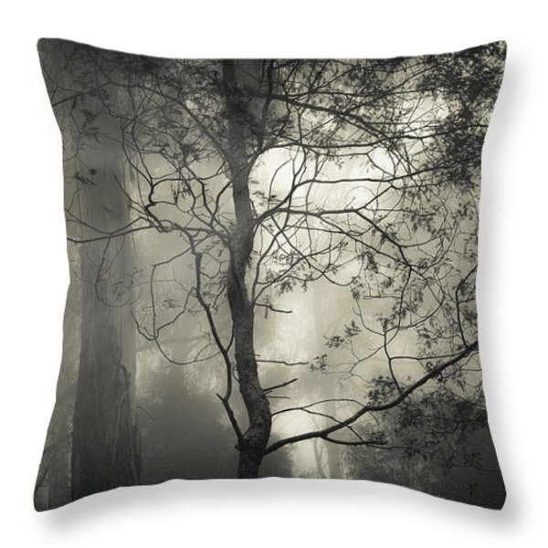 Silent Stirring Throw Pillow by Amy Weiss