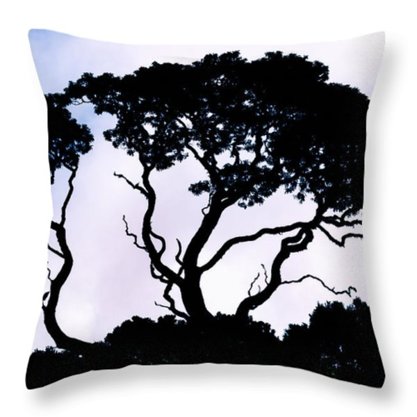 Silhouette Throw Pillow by Jim Thompson