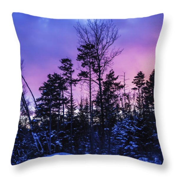 Silhouette Of Trees During A Colourful Throw Pillow by Jacques Laurent