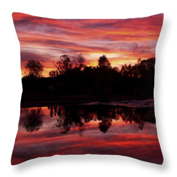 Silohuettes Throw Pillow by Tom Kelly