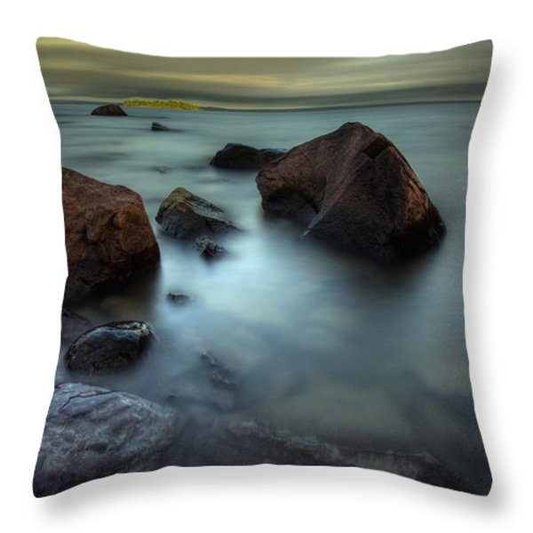 Silver And Gold Throw Pillow by Jakub Sisak