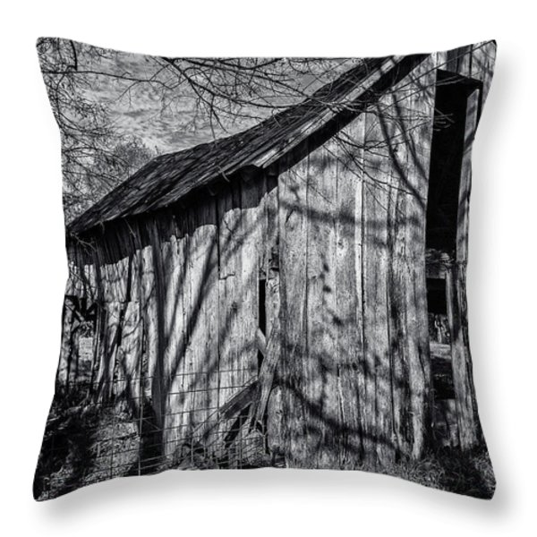 Silver Grey Throw Pillow by CJ Schmit