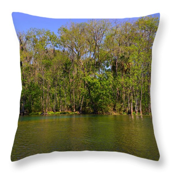 Silver Springs - Old-style Florida Throw Pillow by Christine Till
