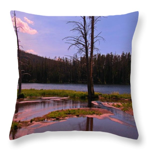 Simple Beauty of Yellowstone Throw Pillow by John Malone