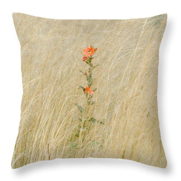 Simple Splash of Color Throw Pillow by Debra Martz