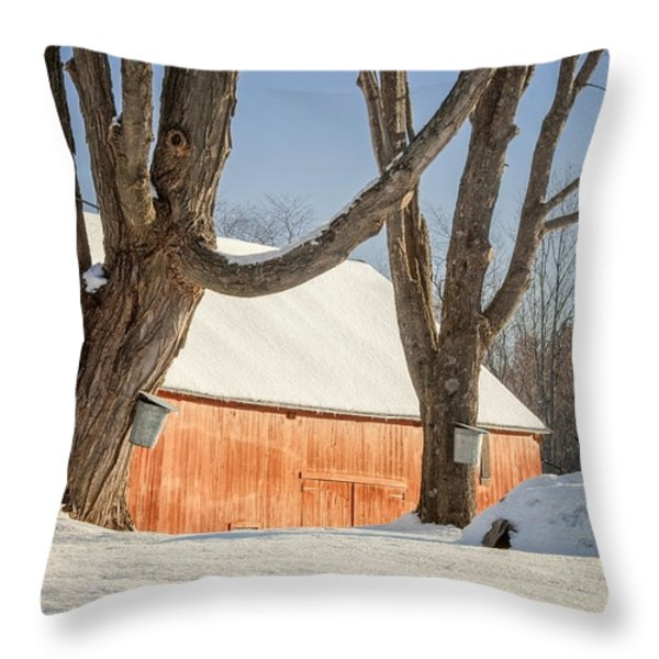 Simple Sugar Throw Pillow by Bill  Wakeley