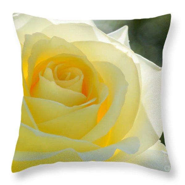 Simplicity Throw Pillow by Sabrina L Ryan