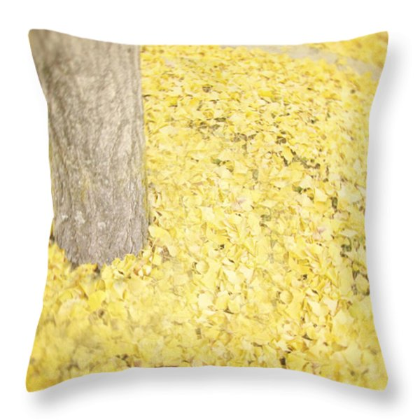 Since You've Been Gone Throw Pillow by Amy Tyler