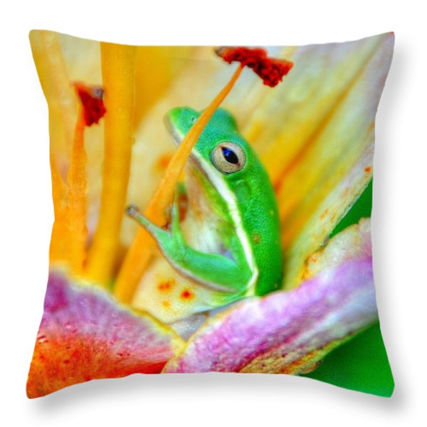 Sit A Spell Throw Pillow by Charlotte Schafer
