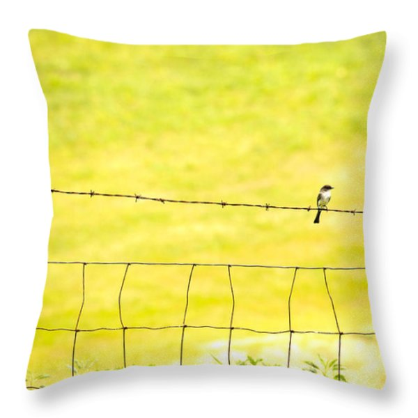 Sitting On A Wire Throw Pillow by Karol  Livote