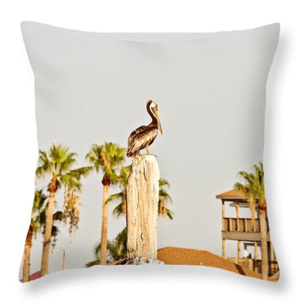 Sitting On The Throne Throw Pillow by Scott Pellegrin