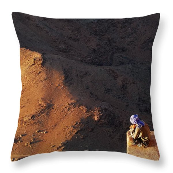 Sitting On Top Of The World Throw Pillow by Hannes Cmarits