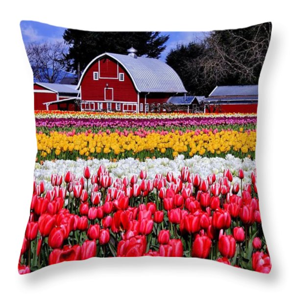 Skagit Valley Throw Pillow by Benjamin Yeager