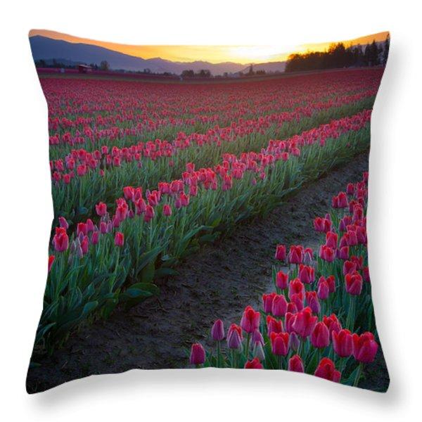 Skagit Valley Blazing Sunrise Throw Pillow by Inge Johnsson