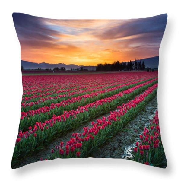 Skagit Valley Predawn Throw Pillow by Inge Johnsson