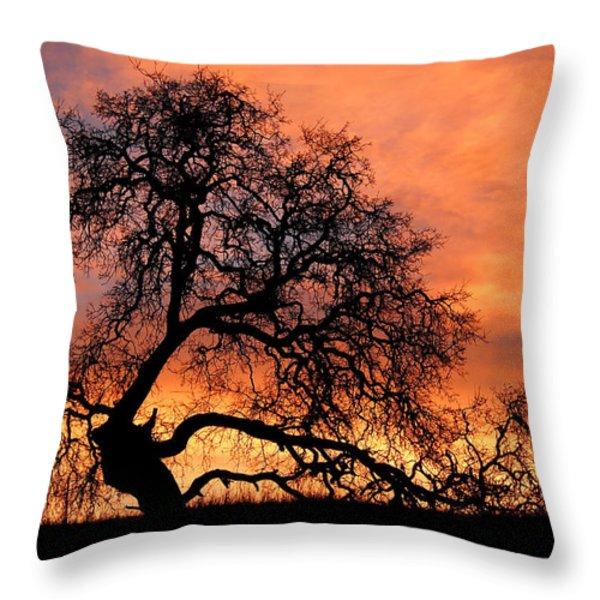 Sky On Fire Throw Pillow by Priya Ghose