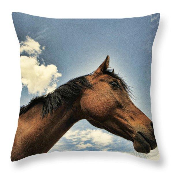Sky Watcher Throw Pillow by Karen Slagle