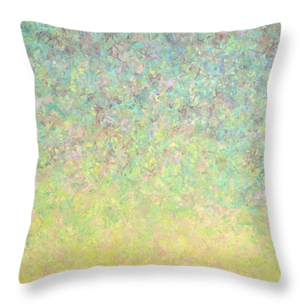 Skywatching In A Painting Throw Pillow by James W Johnson