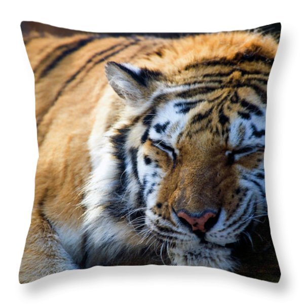 Sleeping Beauty Throw Pillow by Karol Livote