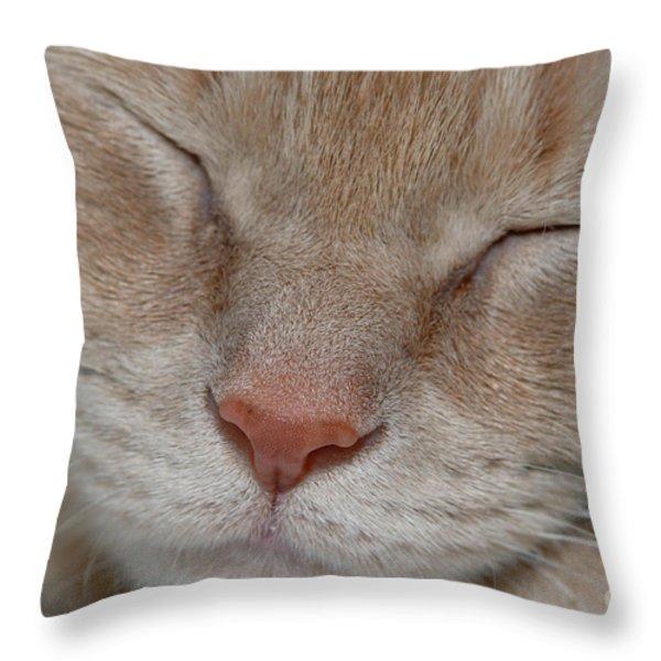 Sleeping Cat Face Closeup Throw Pillow by Amy Cicconi