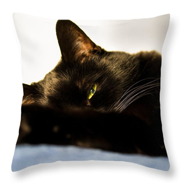 Sleeping with one eye open Throw Pillow by Bob Orsillo