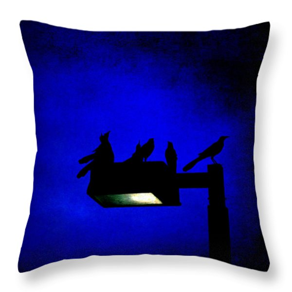 Sleepless At Midnight Throw Pillow by Trish Mistric